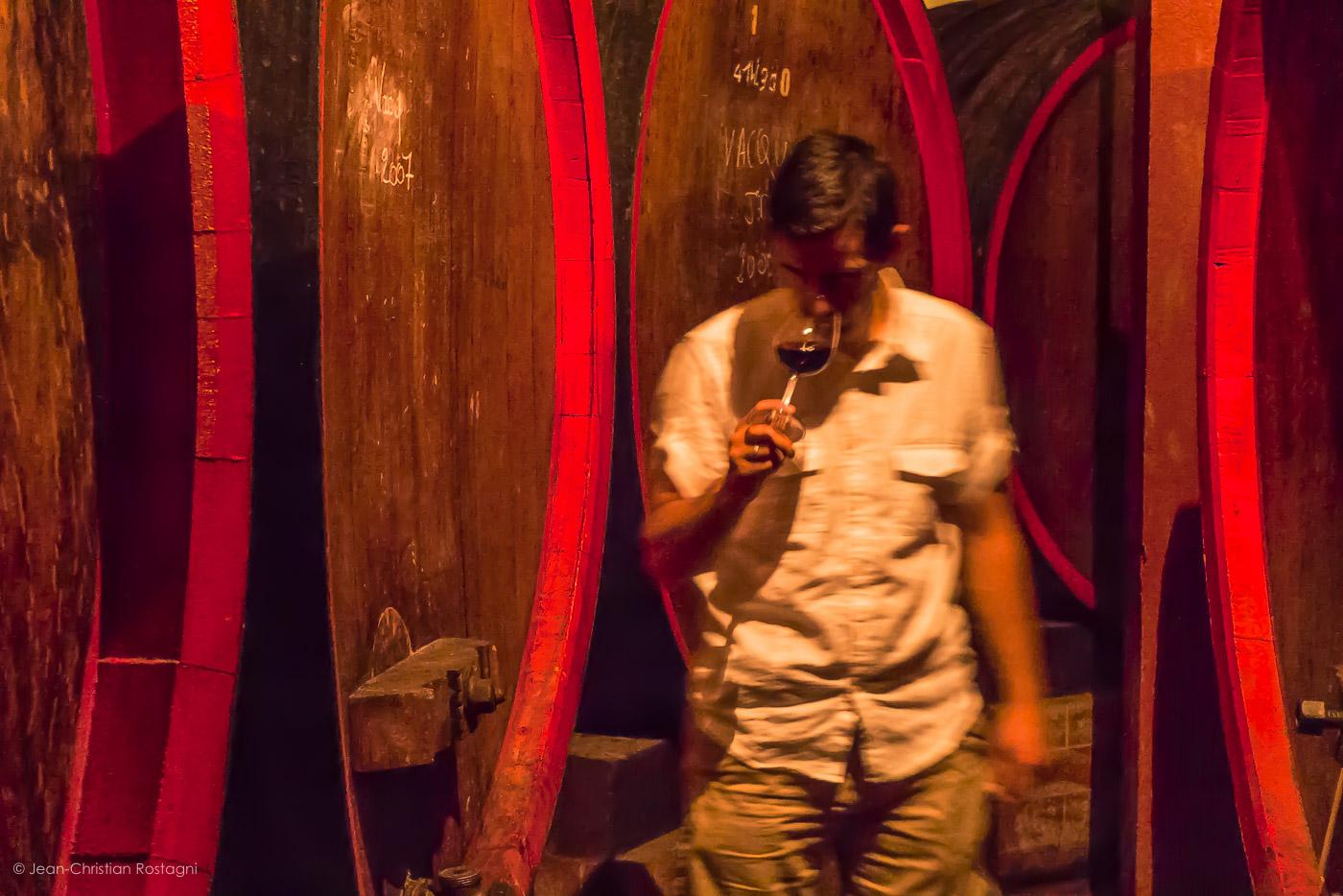 rhone valley, maison arnoux, wine barrels
