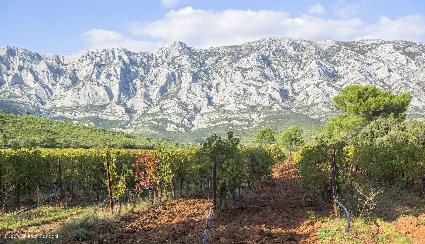 domaine richeaume, montagne Sainte Victoire